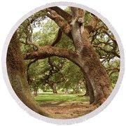 A Maze Of Oak Trees  Round Beach Towel