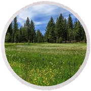 A Meadow In Lassen County Round Beach Towel