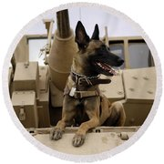 A Military Working Dog Sits On A U.s Round Beach Towel