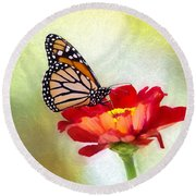 A Monarch Moment Round Beach Towel