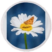 A Moth Collects Pollen On A Single Daisy Blossom. Round Beach Towel