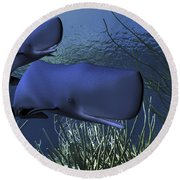 A Mother Sperm Whale Escorts Her Calf Round Beach Towel by Corey Ford