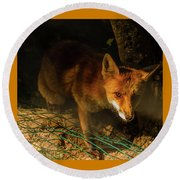 A Nocturne  Meeting With A Fox In The Woodland Round Beach Towel