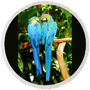 A Pair Of Parrots Round Beach Towel