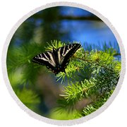 A Pale Swallowtail Round Beach Towel