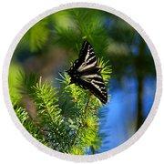 A Pale Swallowtail Vertical Round Beach Towel