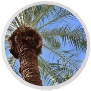 A Palm In The Sky Round Beach Towel