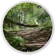 A Path In The Woods Round Beach Towel