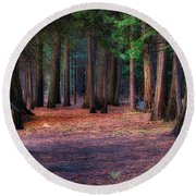 A Path Of Redwoods Round Beach Towel
