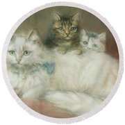 A Persian Cat And Her Kittens Round Beach Towel