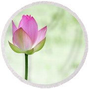 A Pink Lotus Round Beach Towel