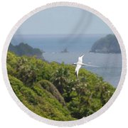 A Red-billed Tropicbird (phaethon Round Beach Towel by John Edwards