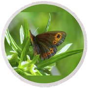 A Red Butterfly Perching  Round Beach Towel