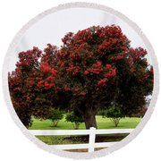 A Red Pin Under A Red Tree At Morro Bay Golf Course Round Beach Towel