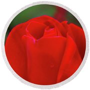 A Red Rose Unfolding  Round Beach Towel