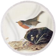 A Robin Perched On A Mossy Stone Round Beach Towel