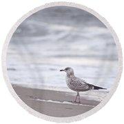 A Seagull At The Beach Round Beach Towel