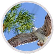 A Seagull Flyby Round Beach Towel