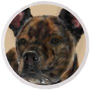 A Serious Pooch Round Beach Towel