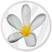 A Single Plumeria Flower Isolated Round Beach Towel