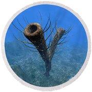 A Species Of Pirania, A Primitive Round Beach Towel