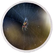 A Spider And Her Web Round Beach Towel