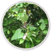 A Spider Web Round Beach Towel