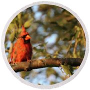 A Spot Of Red In The Trees Round Beach Towel