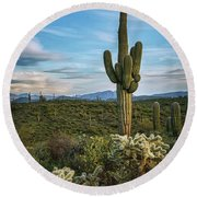 A Spring Evening In The Sonoran  Round Beach Towel