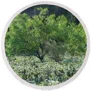 A Spring Scene In Texas. Round Beach Towel