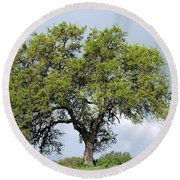 A Tale Of One Tree Round Beach Towel