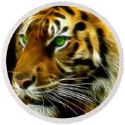 A Tiger's Stare Round Beach Towel