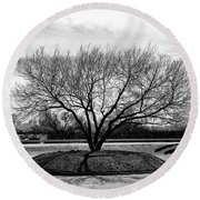 A Tree In Fort Worth Round Beach Towel