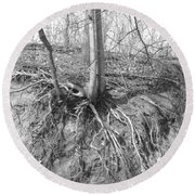 A Tree In Shiawassee Park, Living On The Edge Round Beach Towel