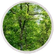 A Tree In The Woods At The Hacienda  Round Beach Towel