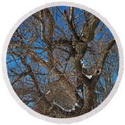 A Tree In Winter- Horizontal Round Beach Towel