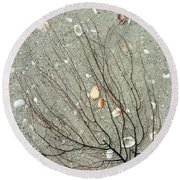 A Tree On The Beach - Sea Weed And Shells Round Beach Towel