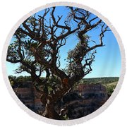 A Tree On The Edge Round Beach Towel