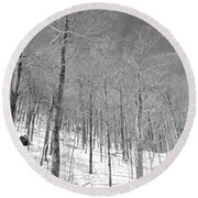 A View Through The Woods Round Beach Towel