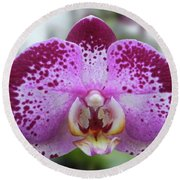 A Violet Orchid Round Beach Towel