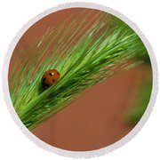 A Walk In The Tall Grass Round Beach Towel