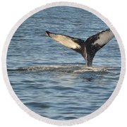A Whale Of A Tail Bar Harbor Round Beach Towel