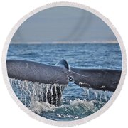 A Whale Of A Tale Round Beach Towel