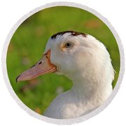 A White Duck, Side View Round Beach Towel