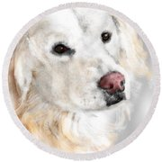 A White Golden Retriever Round Beach Towel