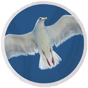 A White Gull Flying In Sky Round Beach Towel
