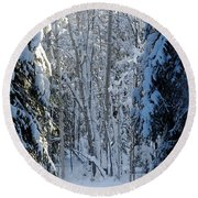A Winter View  Round Beach Towel