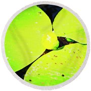 A Yellow Bud Of Waterlily Round Beach Towel