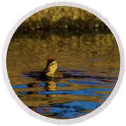 A Young Duckling Round Beach Towel