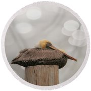 Above It All - Brown Pelican Round Beach Towel